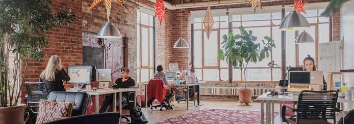 Small radish lab brooklyn office  2020 edit