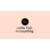 Small littlefishaccounting desktop wallpaper