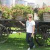 Small wine cart