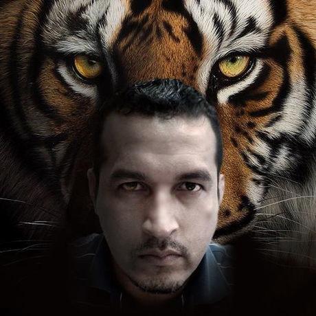 Tigerae 2