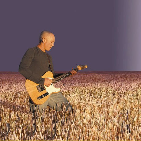 Tele in wheatfield 736x478
