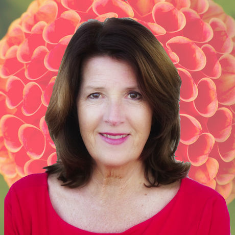 Suzanne merritt flower
