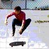 Small skat1