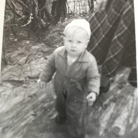 Dan 1951