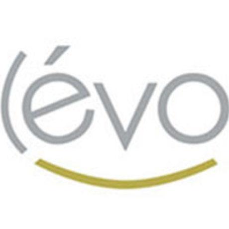 Levo advertising and branding agency