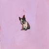 Small dog04