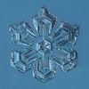 Small snowflake 2015.01.26.001