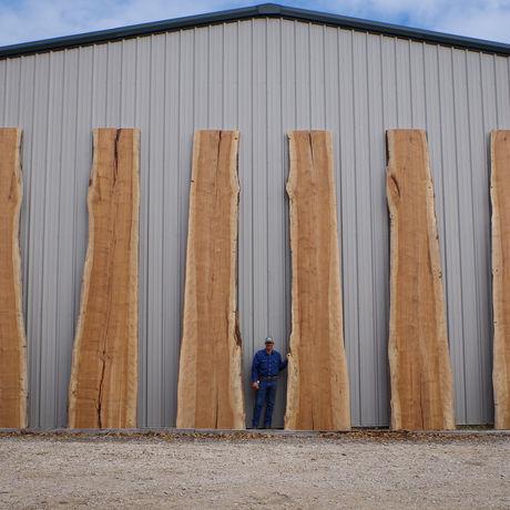 Berdoll sawmill 20 foot pecan slabs 2017 8