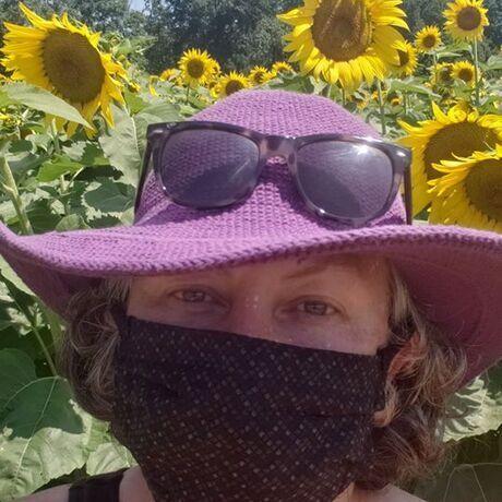 Roddi sunflowers