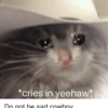 Small cries in yeehaw do not be sad cowboy 38182697